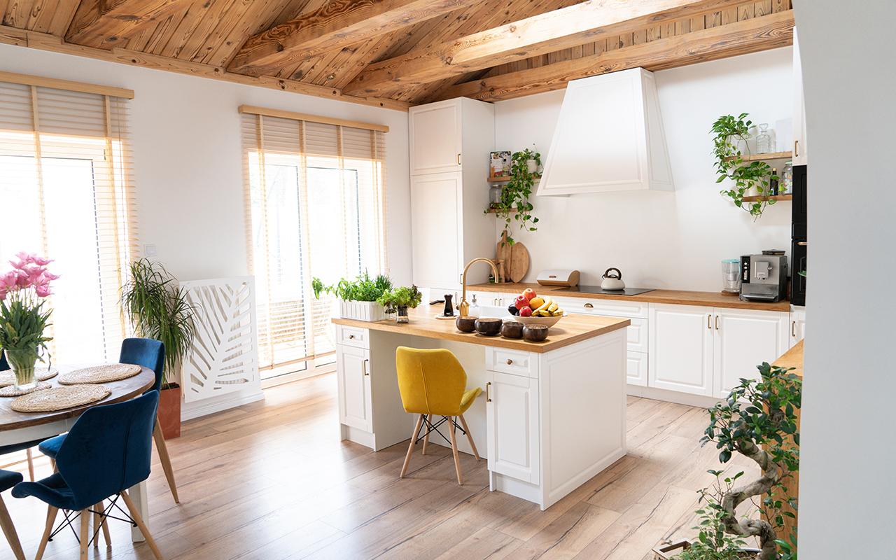 Plants in kitchen design